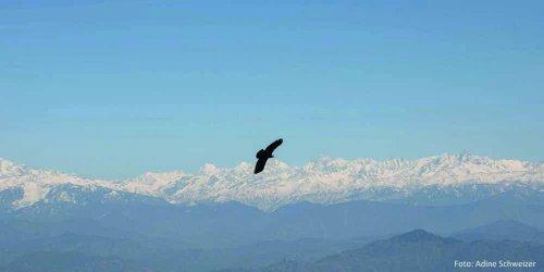 Nepal – dieses kleine Land am Himalaya –  Die faszinierende Bergregion mit ihren vielen schneebedeckten Achttausendern begeistert  jährlich Tausende von sportbegeisterten Touristen aus der ganzen Welt.